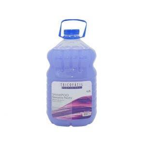 Shampoo Hidramais Queratina Neutro 4,8l